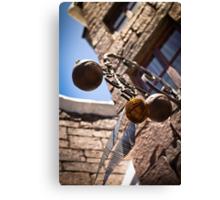 Quidditch Essentials Canvas Print