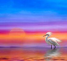 Egret in Pastel by Richard Gaffney