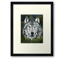 Night Watcher Framed Print