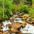 The babbling brook... by grantsphoto