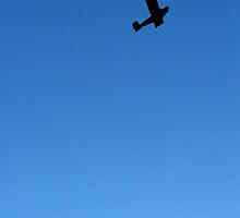 Flying Plane by Mac Cormier