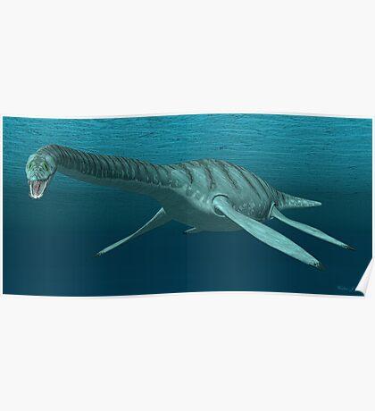 Plesiosaur Poster
