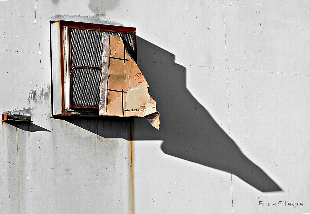 Window with Cardboard by Ethna Gillespie