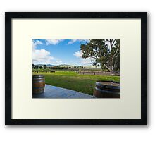 Jacobs's Creek Vineyard Framed Print