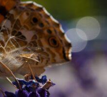 Butterfly & Lavender Sticker