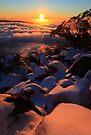 Mount Torbreck by Donovan Wilson