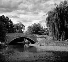 Sinnington Bridge in monochrome by Andy Burke