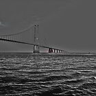 Great Belt Bridge  by imagic