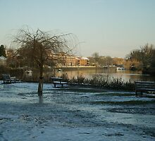 Twickenham Riverside in Frost by Rob Howard