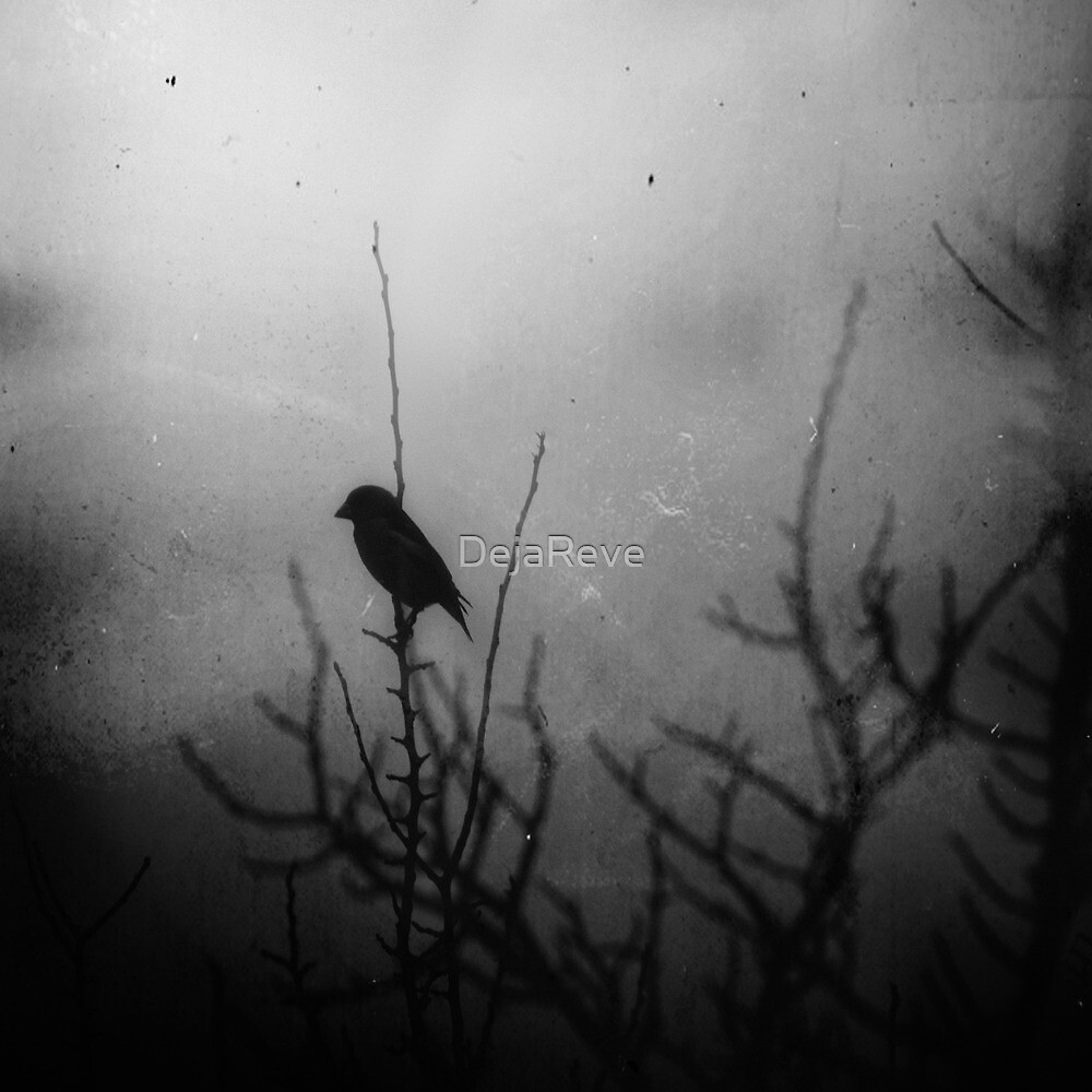 Winter mood by DejaReve
