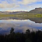 Reflection on Tasmania. by Warren  Patten