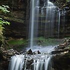 Horseshoe Falls, Munising, Michigan by Robert Kelch, M.D.