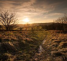 South Downs, Winter Sunset by Chester Tugwell