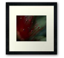 Lava Bloom Framed Print