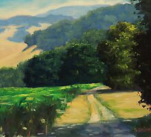 Along The Vineyard by Steven Guy Bilodeau