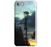 Forest Sunset iPhone Case/Skin