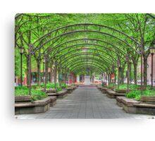 Sanctuary in the City HDR Cincinnati Ohio garden photography Canvas Print