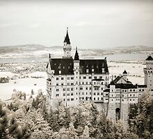Neuschwanstein Castle in Infrared  by Kaitlin Kelly
