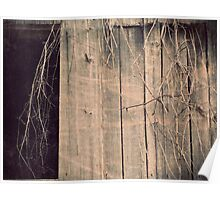 Vintage Barn Vine black and white rustic barn photography Poster