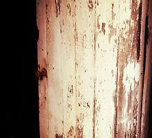 Vintage Door rustic old barn door with rusty door knob by jemvistaprint