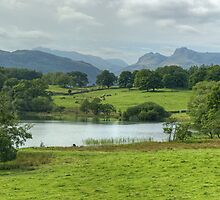Loughrigg Tarn and Langdale Pikes by Jamie  Green