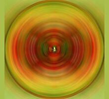 The Spinner Wheel by Robert Gipson