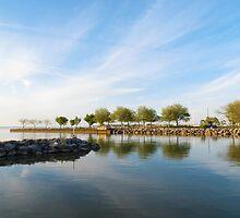 Shoreline Park by SRowe Art