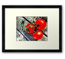 Vine Ripened Trio Framed Print
