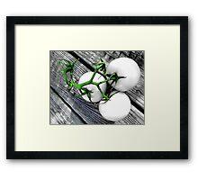 Vine Ripened Trio - Glossy White Framed Print