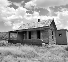 Home on the Range--Ruined Homestead in Cuervo, New Mexico, Take 2 by CandyApplCrafts
