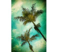 Swaying Palms Photographic Print