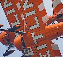 Crazy Wingwalking - Dunsfold 2013 by Colin  Williams Photography