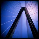 Arthur Ravenel Jr. Bridge - Charleston, SC #1 by Edith Reynolds