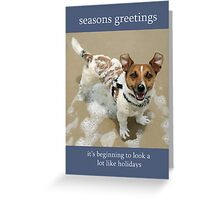 Jack Russell Rescue Xmas Card 2 Greeting Card