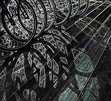 Sunlight Through Bicycle Wheels by Kim Krause