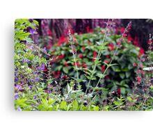 Wildflower stands Canvas Print