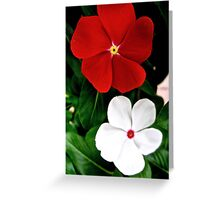 red and white Greeting Card