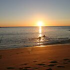 Surf into Sunrise - Mona Vale Beach, Sydney by Jane Wilkinson-Franssen