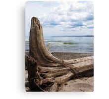 Lake Erie Shore 2 Canvas Print