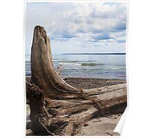 Lake Erie Shore 2 Poster