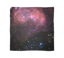 Large Magellanic Cloud Scarf