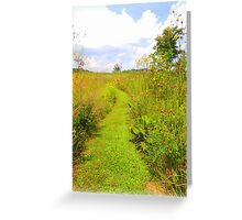 Trail to Summer Greeting Card