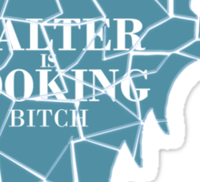 Walter is cooking bitch Sticker