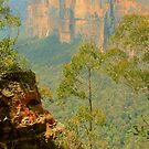 The Rugged Blue Mountains by Michael Matthews