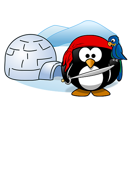 Pirate Penguin In Antarctica by kwg2200