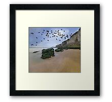Curlew Dawn Framed Print