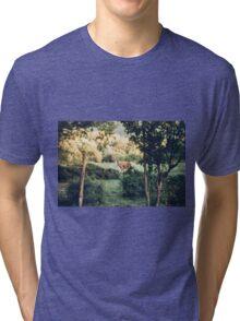 Lone Deer  Tri-blend T-Shirt