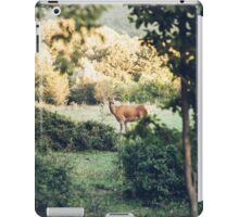 Lone Deer  iPad Case/Skin