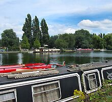 Narrowboats on the Thames by ronsaunders47