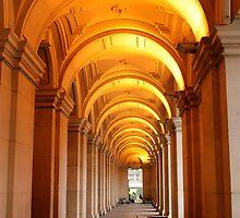 Glowing walkway by terway